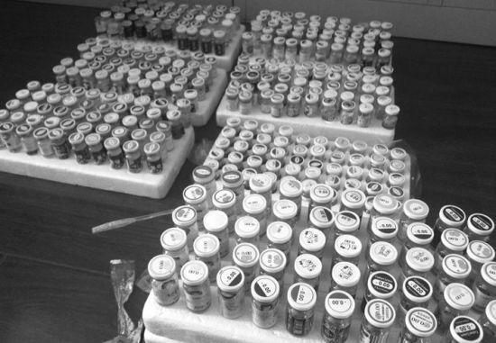 沈阳市食品药品监督管理局在此次行动中查扣600余片美瞳