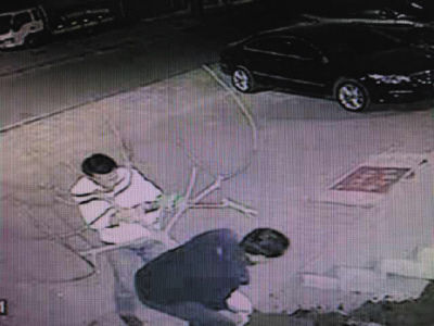 监控录像记录下了两名窃贼正在盗拔无花果树。