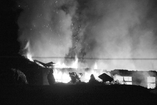 消防官兵奋力扑救仓库大火。半岛晨报、海力网摄影记者孙振芳