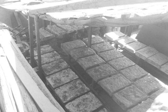问题焖子就是在这样的窝棚里日夜生产出来的,并在窝棚里晾晒。