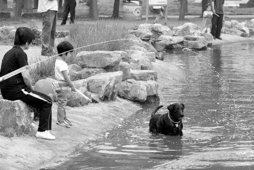 娃娃与狗同玩水