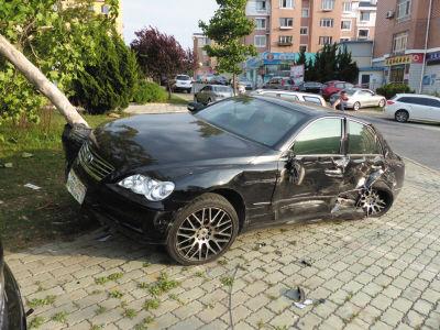 停在路边的黑色轿车被撞后将一棵树撞倒。