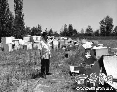 站在废弃的产箱前,养狐场负责人刘虹沮丧至极。