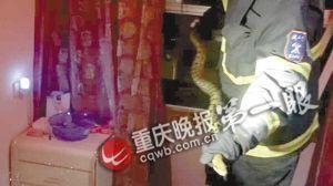 这条大蛇长约两米