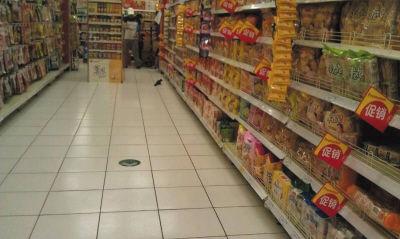超市内出现小老鼠