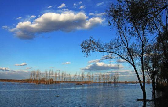 【依托辽河】   辽河自古以来就被誉为辽宁人民的母亲河,是中国七大河流之一,地理位置优越、自然风光优美,岸边滩地错落,拥有水岛相映、绿树成荫、芦苇丛生、自然优雅的怡人湿地景观。沈北新区区委、区政府抓住辽河生态保护区建设契机,投巨资兴建全国市区最大湿地公园辽河七星湿地公园。公园地处辽河岸边,园区内主要以辽河水面风景为主,打造亲山近水、回归自然、觅古寻踪、多元文化成为七星旅游经济区内一大亮点,令辽河重新焕发夺目光彩,是辽河保护开发的重要节点。 [1] [2] [3]