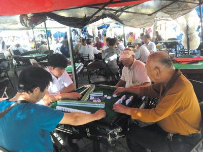 广场上摆放了30多张麻将桌,而且有一半已经组成了牌局。