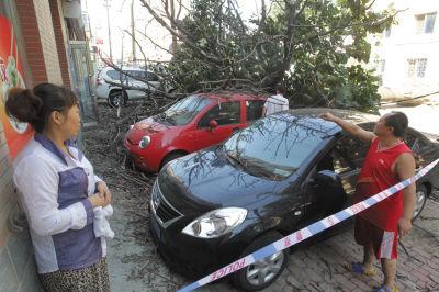 有四辆车不同程度受损,画圈处是当时饭店员工和小女孩玩的位置。