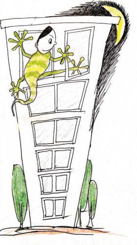 蜘蛛贼 飞檐走壁专爬顶层偷再被抓 痛哭流涕绝技用错地