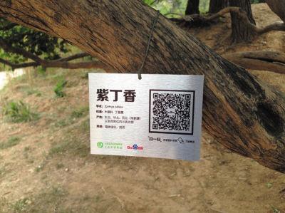 植物园里花木植物被挂上二维码标识牌。