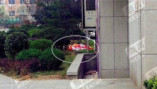 辽宁大连六旬老公公砍死坐月子儿媳后跳楼身亡