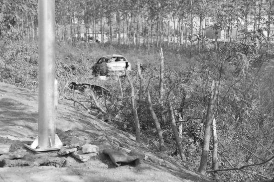 轿车冲进沟里,路边小树被撞断。半岛晨报、海力网摄影记者阎昱颖