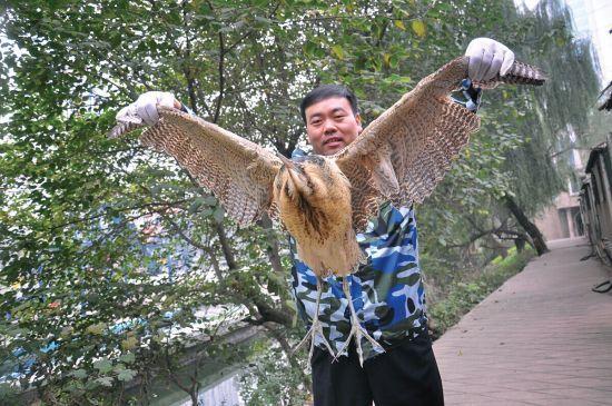 村民捡到不知名大鸟 翅膀张开将近一米长(图)