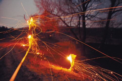 沈北40亩国有林场突发大火