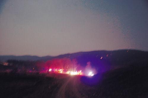 沈北40亩国有林场昨突发大火 火灾现场全景