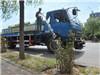 绿化人员浇水抗旱
