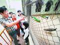 男子负债百万自办动物园