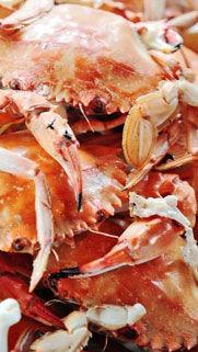 """舟山纯朴""""渔家菜"""" 浓浓普陀味的海鲜大餐"""