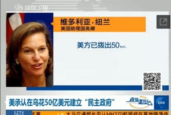 """美承认在乌花50亿美元建立""""民主政府"""""""