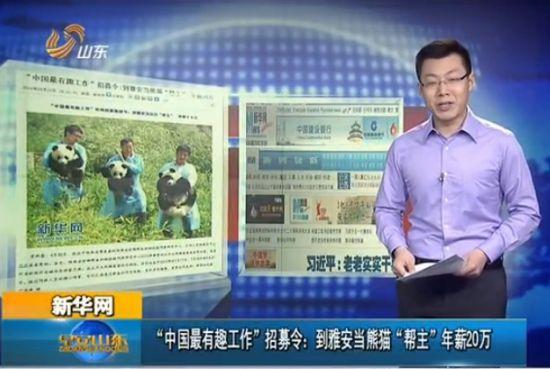四川招募熊猫帮主 年薪20万配车不加班