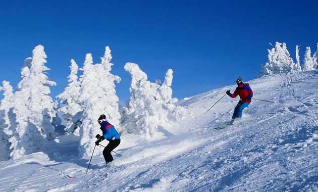 爱情雪风景图片